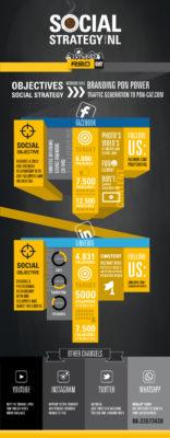 pon2-infographic